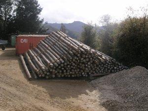 I pali da 12 metri per i primi 20km di linea