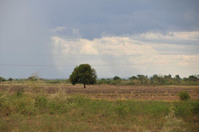 Acqua e Pioggia in Tanzania
